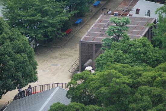 20070708yuki3.jpg